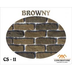 CS 11 -  BROWNY
