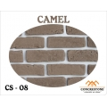 CS 08 - CAMEL