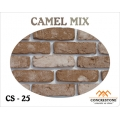 CS 25 - CAMEL MIX