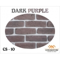 CS 10 -  DARK PURPLE