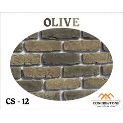 CS 12 - OLIVE