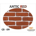 CS 09 - ANTIC RED