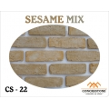 CS 22 - SESAME MIX